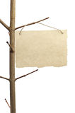 Paper for announcement on a tree branch. Isolated on a white background Stock Photography