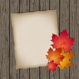 Paper ark med höstleaves Royaltyfria Foton