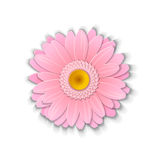 Paper art gerbera. Royalty Free Stock Photography