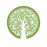 Paper art illustration of apple tree in circle. Vector design Stock Photos