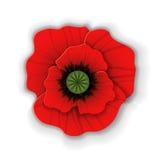 Paper art red poppy. Cute red poppy flower in paper art style  on white background. Origami poppy. Vector illustration Stock Photo