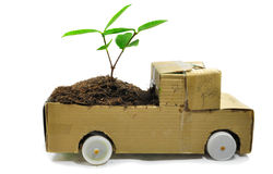 The paper automobile and the seedling Royalty Free Stock Photos