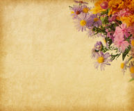 Paper  with autumn flowers. Beige paper  with autumn flowers Stock Image