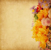 Paper with autumn flowers Royalty Free Stock Photos