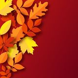 Paper autumn leaves colorful background. Trendy 3d paper cut stye. Paper autumn leaves colorful background. Trendy 3d paper cut style vector illustration Royalty Free Stock Images