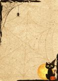 Paper backdrop stylized for Halloween. Frame with net and cat Royalty Free Stock Image