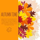 Paper background with autumn foliage Royalty Free Stock Photography