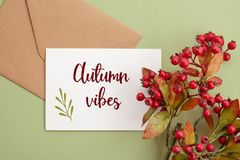 Paper background in autumn pastel colors with decoration Royalty Free Stock Photos