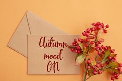 Paper background in autumn pastel colors with decoration Stock Photo