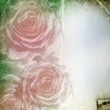 Paper  background with  roses Stock Images