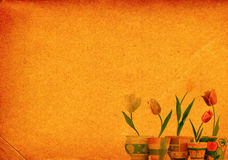 Paper background with tulips Royalty Free Stock Images