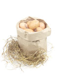 Paper bag with eggs Stock Images