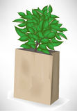 Paper bag with small tree Stock Photo