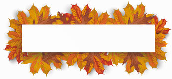 Paper Banner Autumn Foliage Leaves. White paper banners with autumn foliage on the white background Stock Images