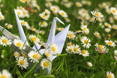 Paper bird and daisies. White paper bird and daisier Stock Photo