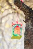 Paper bird feeder on cherry branch with sunshine Stock Photography