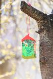 Paper bird feeder on cherry tree in sunny day Stock Photo