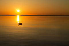 Paper boat floating in the water during sunset Royalty Free Stock Photos