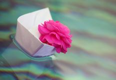 Paper boat pink rose water. Day light royalty free stock photography