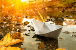 Paper boat in a water and fall leaves. Stock Photo