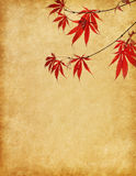 Paper with branch of red autumn leaves. Stock Photography