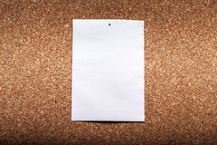 Paper on Brown Cork Background. Empty White Paper on Brown Cork Background royalty free stock images