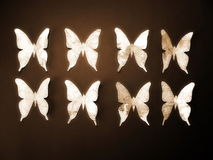 Paper butterflies. Paper cutting Stock Photos