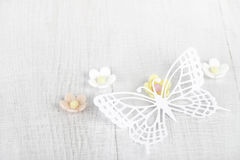 Free Paper Butterfly And Three Sugar Blossom Flowers Royalty Free Stock Images - 18370769