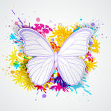 Paper butterfly and blots Royalty Free Stock Image