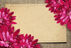 Paper card and aster flowers on canvas Royalty Free Stock Images