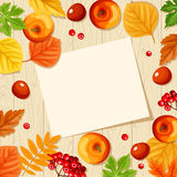 Paper card and colorful autumn leaves and apples on a wooden background. Vector illustration. Stock Image