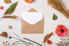 Paper card in envelope composed with autumn dry plants. Autumn background: fallen leaves, dry petals, dried flowers and plants with blank stationary template / royalty free stock photos