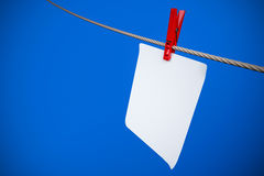 Paper card hanging on the rope Stock Image