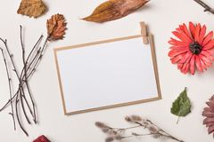 Paper card or invitation and autumn plants royalty free stock photography