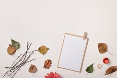 Paper card mock up and autumn dry autumn leaves stock photo