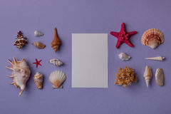 Paper card mock-up and marine Royalty Free Stock Image