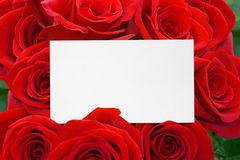 Paper card and roses bouquet Stock Images