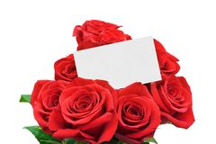 Paper card and roses Stock Image