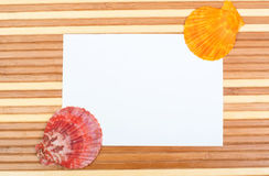 Paper card seashells on wood royalty free stock image
