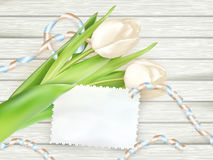 Paper card with tulips. EPS 10 Stock Photography