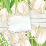 Paper card with tulips. EPS 10 Royalty Free Stock Images