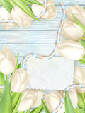 Paper card with tulips. EPS 10 Stock Photos