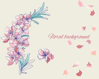 Painted vector flowers in gentle pink colors. Spring contour flowers watercolor royalty free illustration