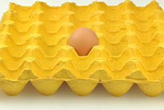 Paper carton with one egg Royalty Free Stock Photos