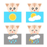 Paper cat weather icon illustration Stock Photo