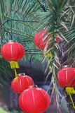 Paper Chinese lanterns on New Year eve Royalty Free Stock Images