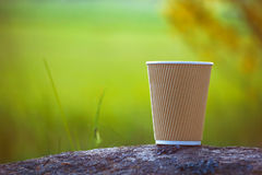 Paper coffee cup outside Royalty Free Stock Images