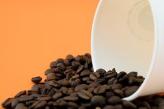 Paper coffee cup with spilled coffee beans, orange background. Coffee beans royalty free stock photo