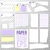 Paper Collection. Different Torn Pieces Shapes and Size from Spiral Bound Notebook. Clean or Blank Pages on Transparent. Paper Collection. Different Torn Pieces royalty free illustration