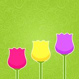 Paper Colorful Tulip Silhouette on Green Abstract Swirl Backgrou Stock Photo